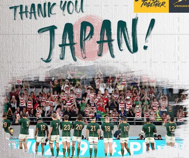 の 海外 日本 ラグビー カップ 反応 ワールド